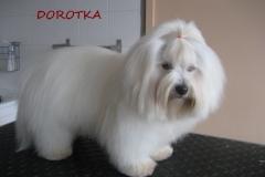 dorotka_1