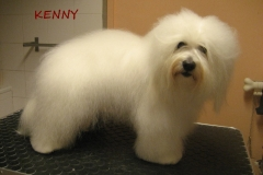 kenny_1