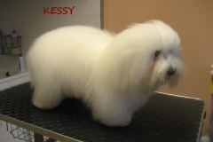 kessy_1