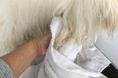 vysušení ručníkem